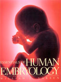 Human embryology larsen